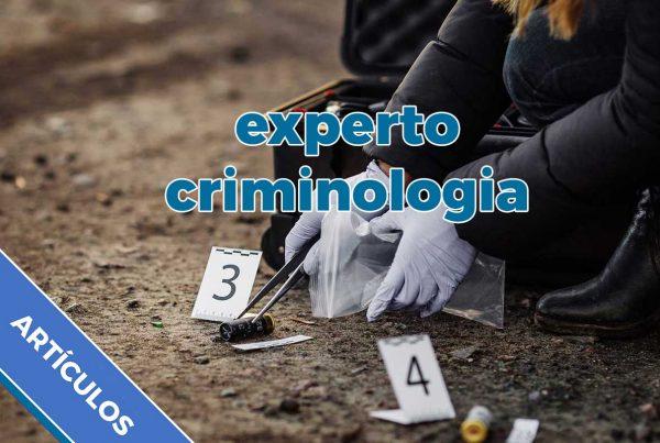 Experto criminología