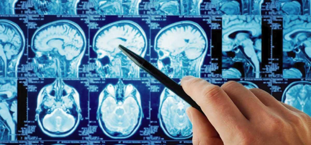 I Jornada Universitaria en Imagenología y Bioimágenes
