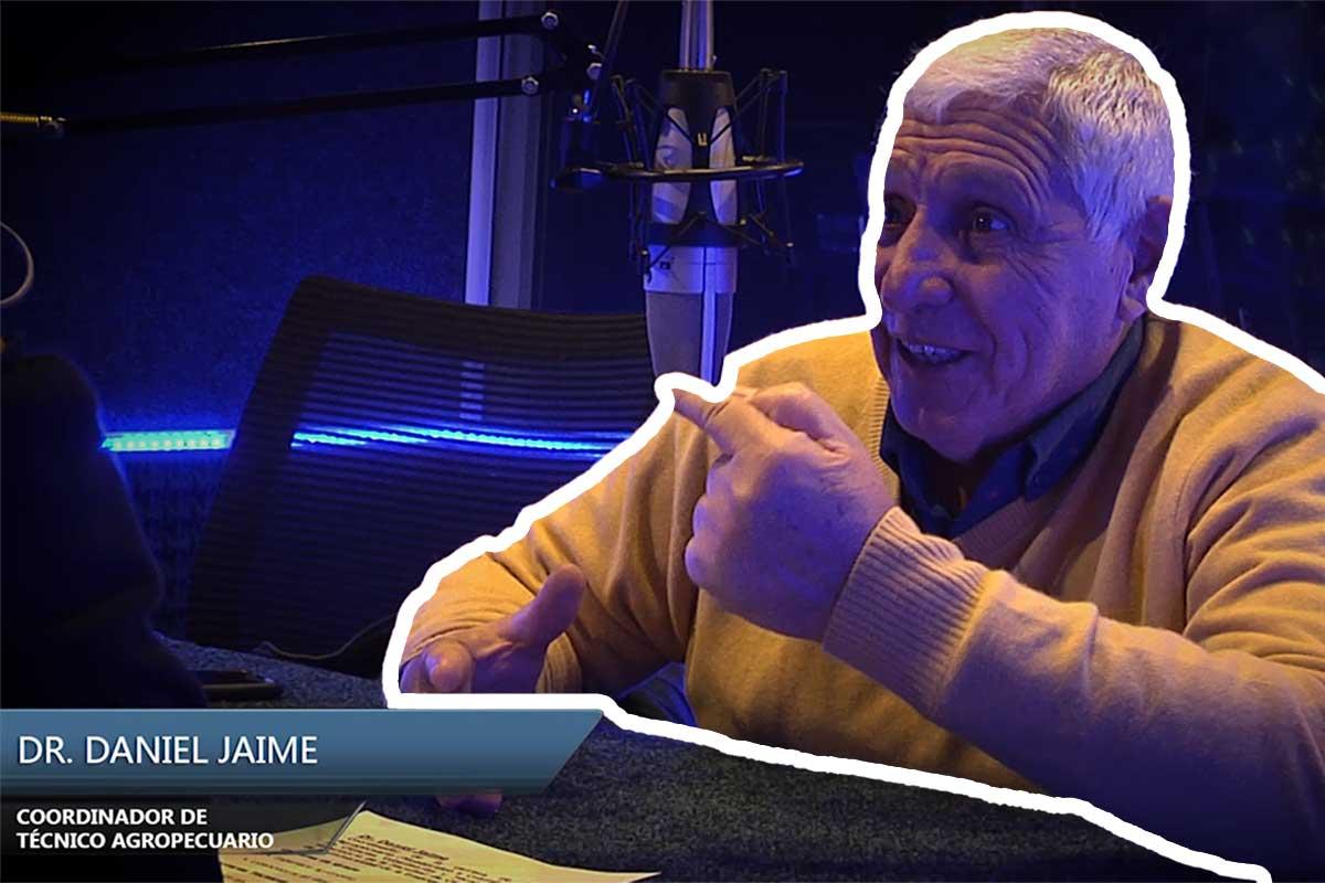 Entrevista Dr. Daniel Jaime